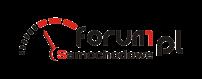 logo_wersja_standard